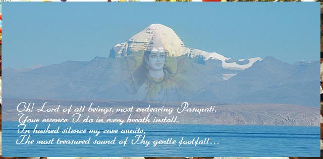 bhavambhavani_fbms1