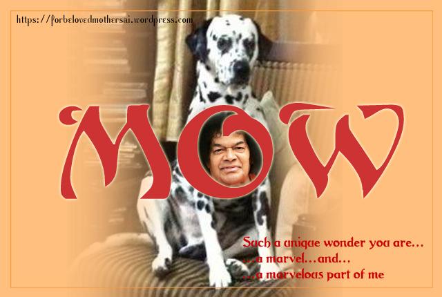 MowSai